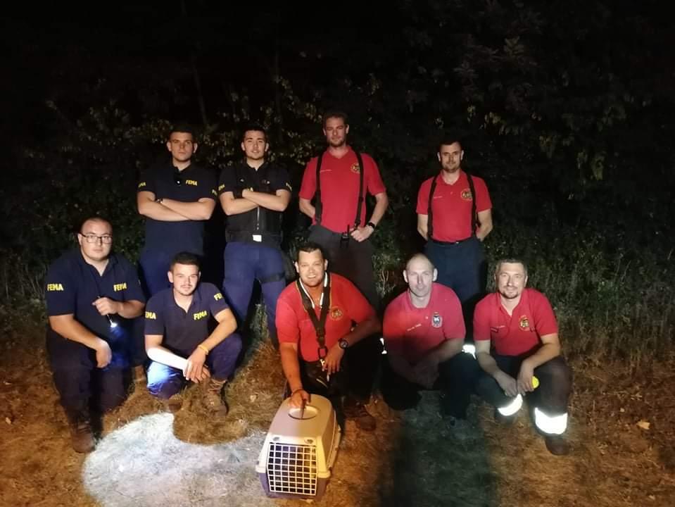 Kútba esett macskát mentettek a móri tűzoltók