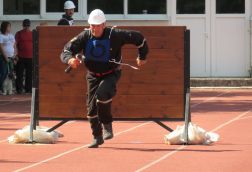Átugrota a palánkot és fut tovább a versenyző