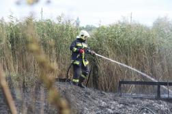 Vízsugárral olt egy tűzoltó