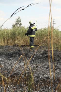 Leégett nádason háttal egy tűzoltó