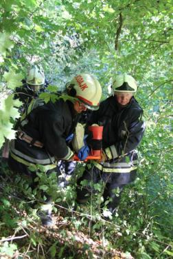Fák között viszik a sérültet