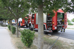 Tűzoltóautók fák takarásában
