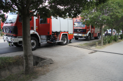 Tűzoltóautók az út szélén fák takarásában